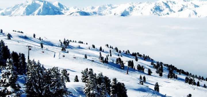 winter-photoshoot-90_193873-800x600